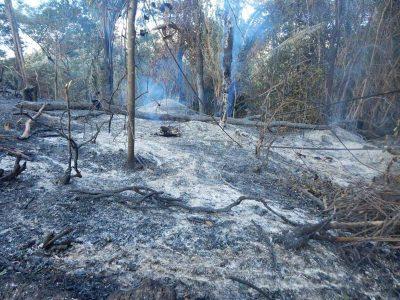 Nas últimas semanas, a equipe da Secretaria de Meio Ambiente e brigadistas voluntários têm atendido chamadas para combater fogo | FOTO: Reprodução/Jacobina Notícias |