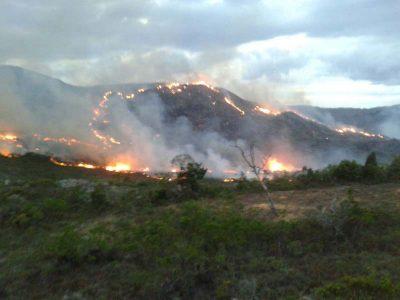 Fogo ameaça nascentes hídricas da Chapada Diamantina | FOTO: Divulgação |