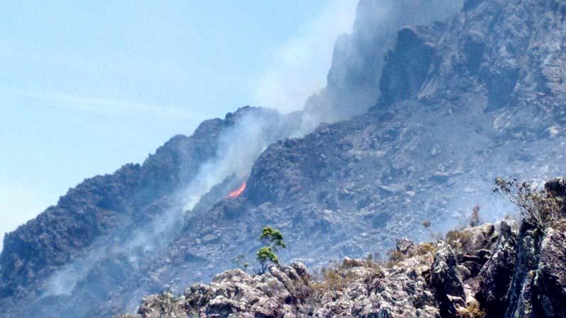 A Secretaria Estadual de Meio Ambiente diz que a área devastada pelo fogo foi de 350 hectares | FOTO: Divulgação/Sema |