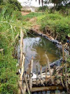 O rio Utinga se encontra em um estado crítico de assoreamento e obstrução   FOTO: Reprodução/Léo Barbosa  
